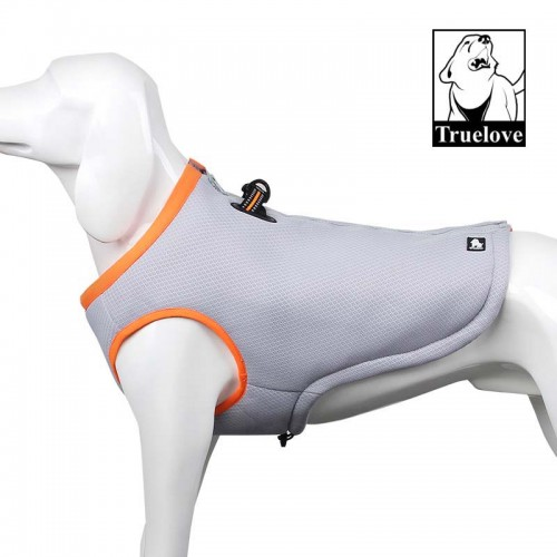 Cooling vest harness to keep dogs cool during Summer.