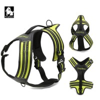 Sports & Adventure Harness