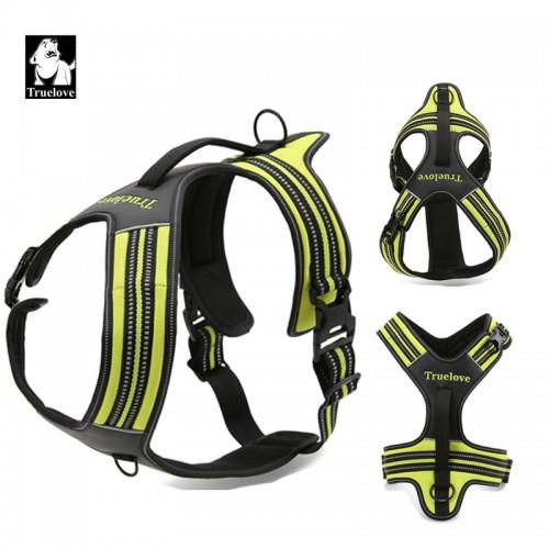 Sports & Adventure Harness