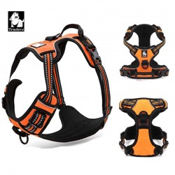 Reflective Nylon dog harness with handle.